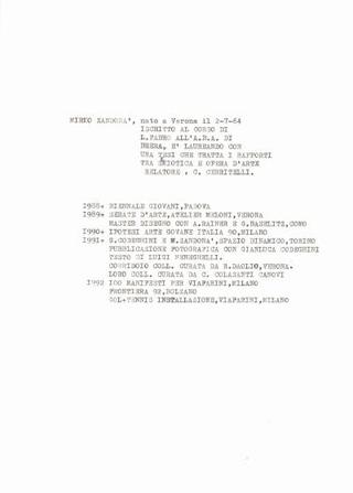 Curriculum di Mirko Zandonà