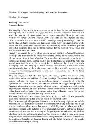 Testo di Francesca Pasini in inglese, 2009.