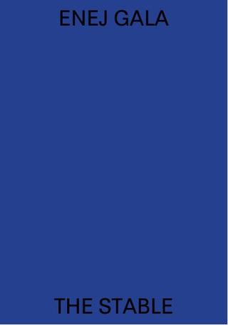 """Catalogo della personale """"The Stable"""", Galleria A plus A, 2015"""